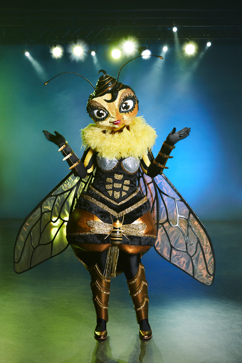 Die Biene - Bildquelle: ProSieben / Marc Rehbeck