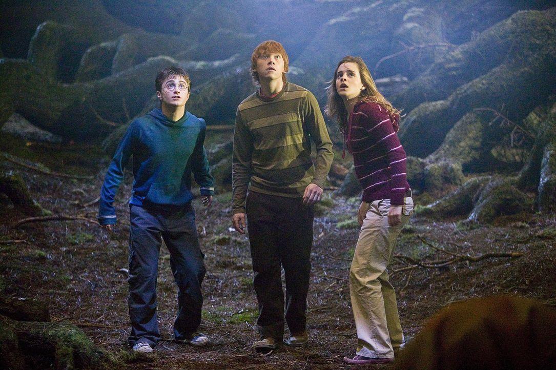 Fudge hat eine neue Dozentin für das Fach Verteidigung berufen: die heuchlerische Dolores Umbridge. Mit ihrer Hilfe will er die Hogwarts-Schüler (... - Bildquelle: Warner Brothers International