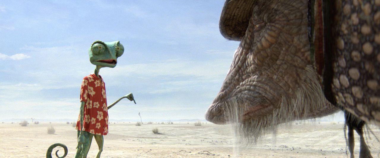 Als Rango (l.) den Grund für seine unglückliche Landung in der Wüste sieht, kann er es nicht glauben: Ein Neunbinden-Gürteltier namens Roadkill (r.)... - Bildquelle: Paramount Pictures. All rights reserved.