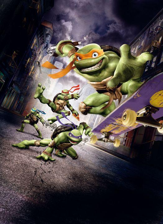Vier ganz besondere Schildkröten leben in der New Yorker Kanalisation. Leonardo (h. l.), Donatello (3. v. l.), Raphael (2. v. l.) und Michelangelo... - Bildquelle: TOBIS Filmkunst GmbH
