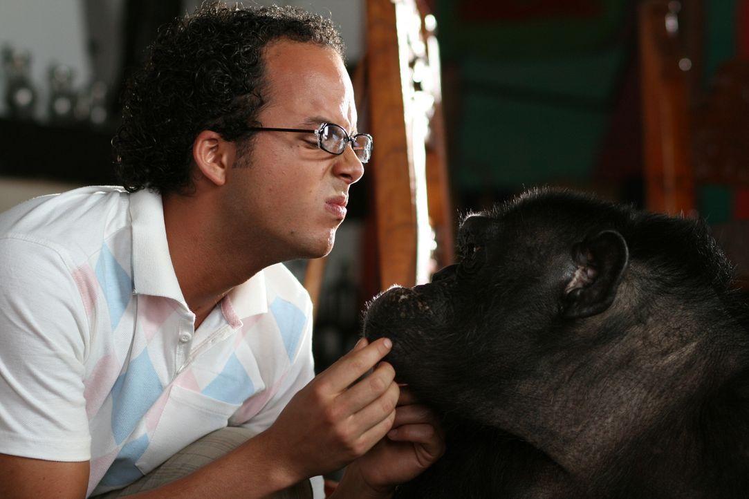 Neben skrupellosen Geschäftemachern haben Moes (Jon Karthaus) und seine Freunde auch noch einen liebestollen Affen am Hals ...