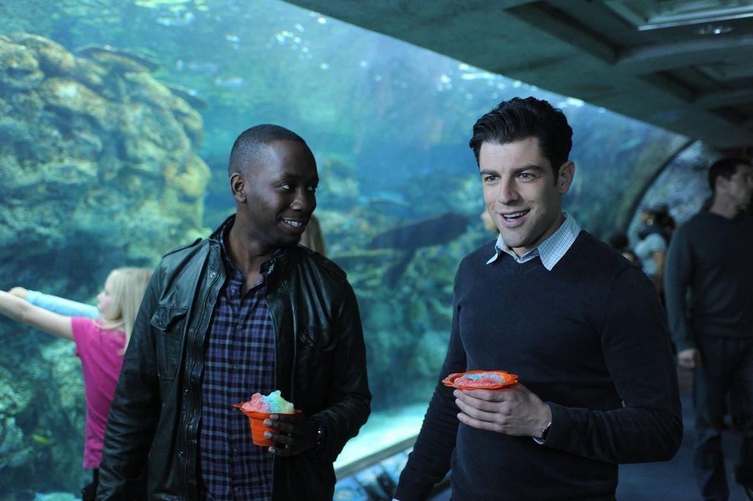 Schmidt (Max Greenfield, r.) macht es fertig, dass Cece bald heiraten wird. Winston (Lamorne Morris, l.) nimmt ihn deshalb ins Aquarium mit, wo Schm... - Bildquelle: 2013 Twentieth Century Fox Film Corporation. All rights reserved