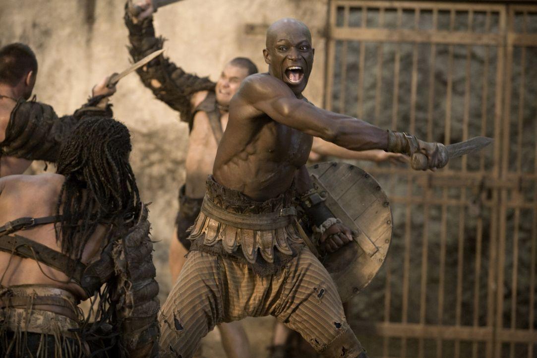Noch nur ein Sklave und einfacher Gladiator im Ludus des Batiatus: Drago (Peter Mensah) ... - Bildquelle: 2010 Starz Entertainment, LLC