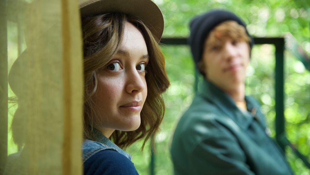 Ich und Earl und das Mädchen - Bildquelle: 2015 - Fox Searchlight