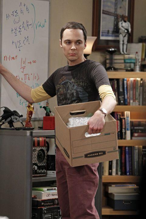 Nach einem Streit mit Leonard packt Sheldon (Jim Parsons) schon mal dessen Sachen zusammen, damit er zu Penny ziehen kann ... - Bildquelle: Warner Bros. Television