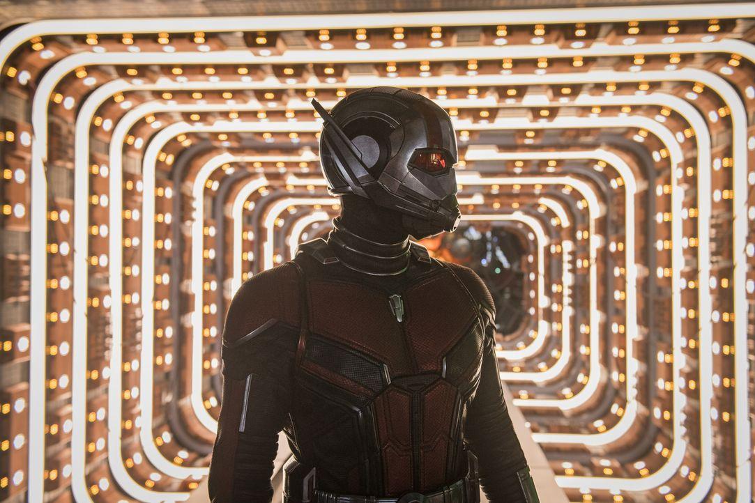 Ant-Man (Paul Rudd) - Bildquelle: Ben Rothstein 2018 MARVEL / Ben Rothstein