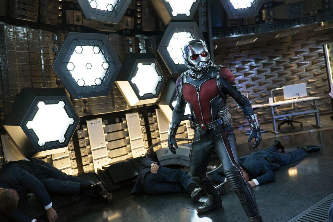 Ant-Man-15-Marvel2014 - Bildquelle: Marvel 2014
