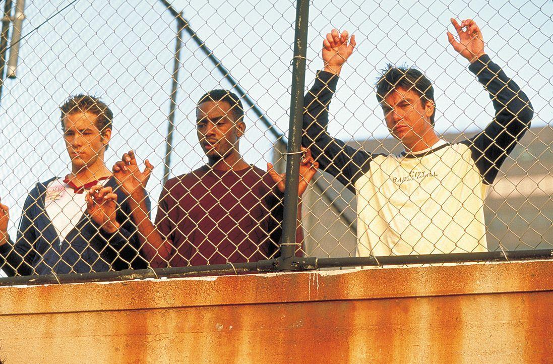 Wollen nur das Beste für ihren Freund David (Jerry O?Connell, r.): Mike (Ryan Reynolds, l.) und Jonesy (Bill Bellamy, M.) ... - Bildquelle: 2003 Sony Pictures Television International. All Rights Reserved.