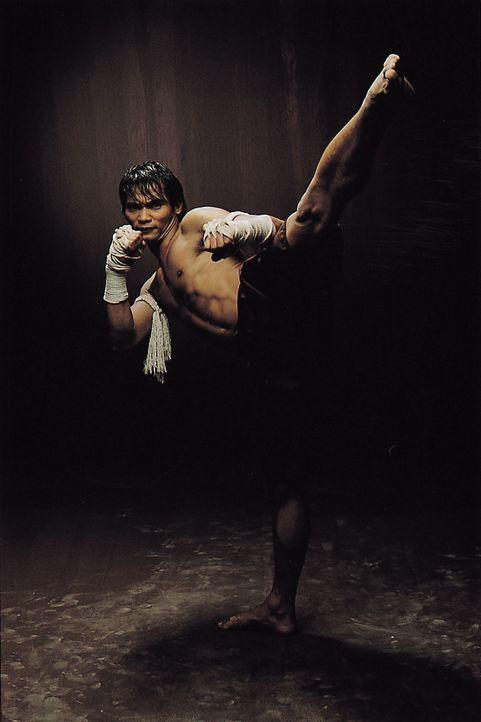 Will sein Dorf vor dem Untergang retten: Muay-Thai-Kämpfer Ting (Tony Jaa) ... - Bildquelle: e-m-s new media AG