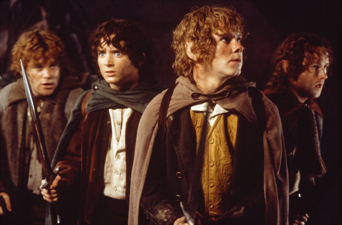 Sam (Sean Astin, 2.v.r.), Merry (Billy Boyd, r.) und Pippin (Dominic Monaghan, l.) begleiten Frodo (Elijah Wood, 2.v.l.) auf seiner Reise nach Mordo... - Bildquelle: Warner Brothers