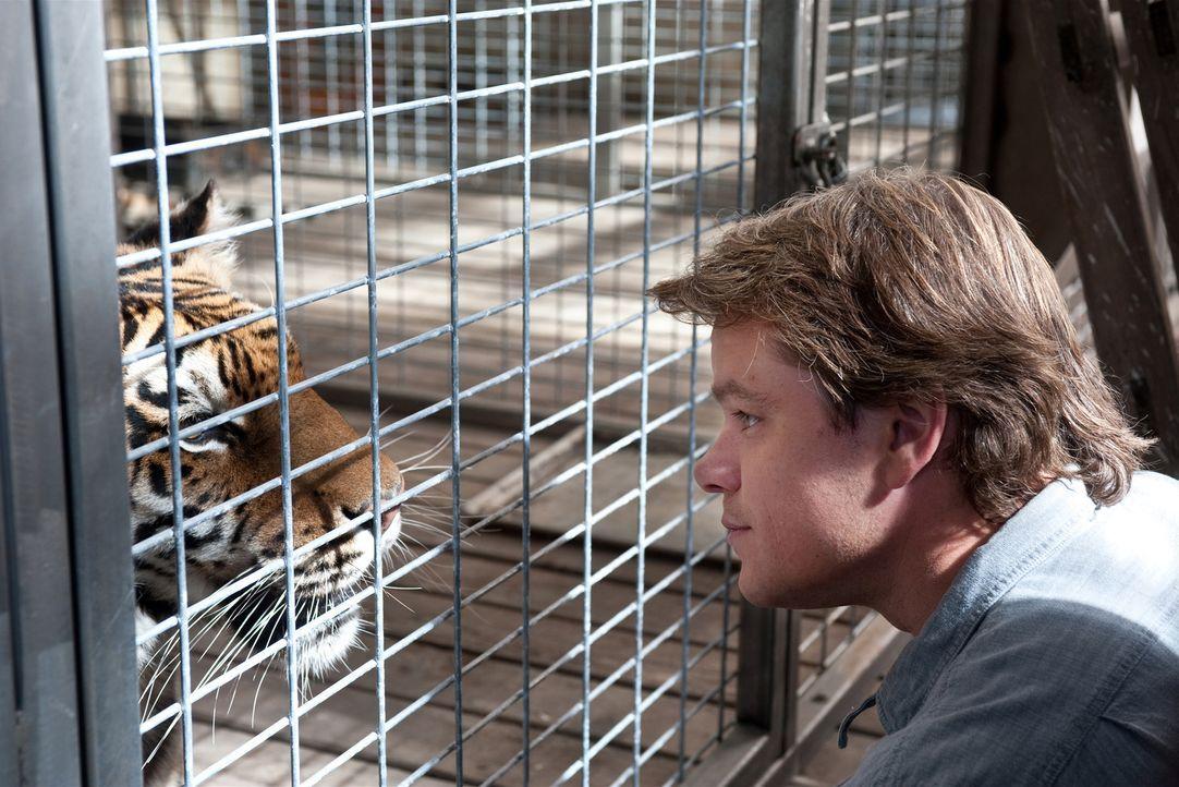 Nach dem Tod seiner Frau will Benjamin Mee (Matt Damon) neu anfangen: Der Journalist sucht ein neues Zuhause für sich und seine beiden Kinder Rosie... - Bildquelle: 2011 Twentieth Century Fox Film Corporation. All rights reserved.