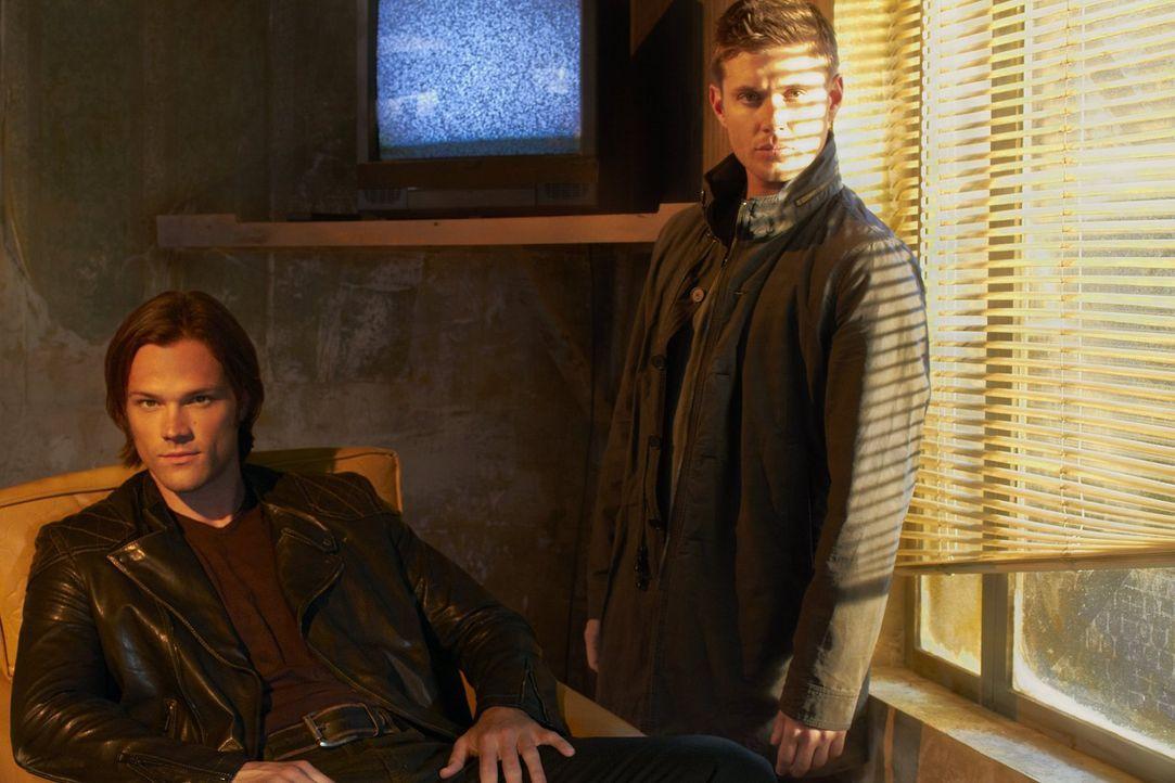(7. Staffel) - Auf der Jagd nach dem Bösen: Sam (Jared Padalecki, l.) und Dean Winchester (Jensen Ackles, r.) ... - Bildquelle: Warner Bros. Television