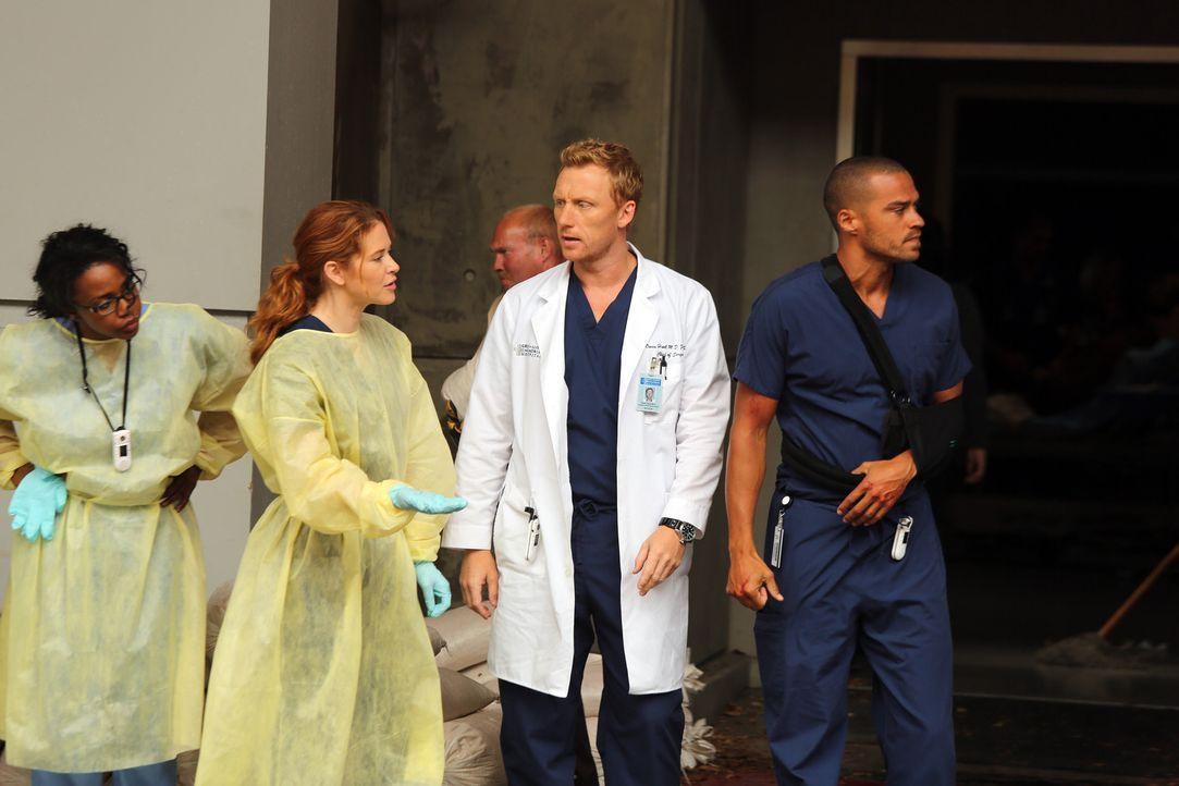 Im Hospital müssen sich die Ärzte Stephanie (Jerrika Hinton, l.), April (Sarah Drew , 2.v.l.), Owen (Kevin McKidd, 2.v.r.) und Jackson (Jesse Will... - Bildquelle: ABC Studios