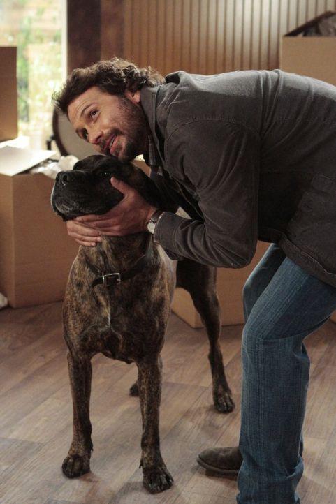 In Chatswin treibt ein streunender Hund sein Unwesen und Sheila zur Weißglut. Um das Ansehen von Chatswin aufrecht zu erhalten, sagt sie der Flohsch... - Bildquelle: Warner Brothers