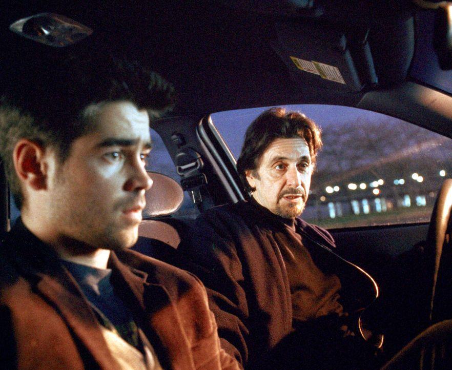 Sein Ausbilder bei der CIA ist der erfahrene Walter Burke (Al Pacino, r.). Er bringt James (Colin Farrell, l.) alle Kniffe und Tricks bei, mit denen... - Bildquelle: Kerry Hayes 2003 Spyglass Entertainment Group, LP. All Rights Reserved. / Kerry Hayes