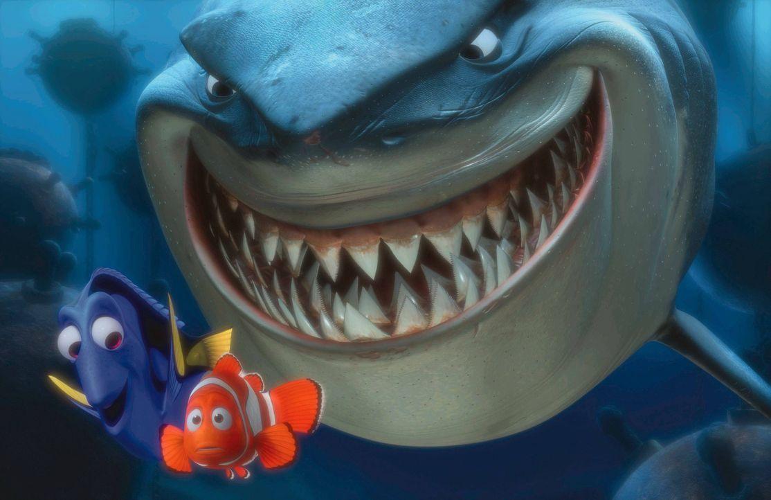 Findet Nemo - Bildquelle: Imago