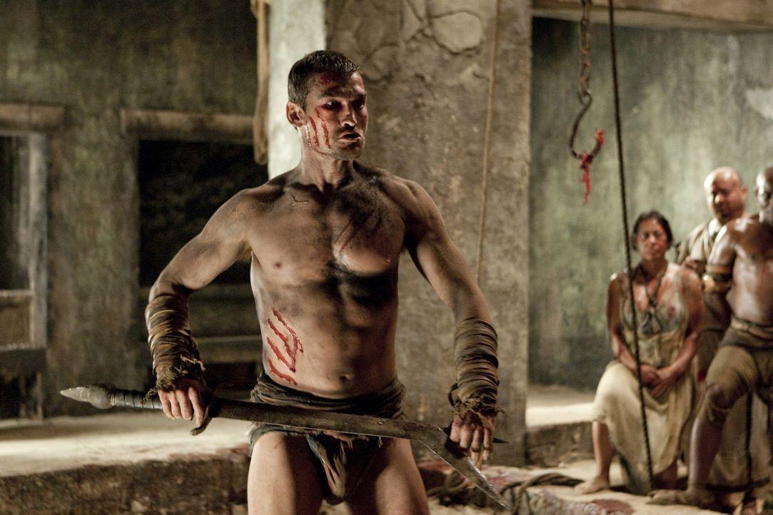 Nachdem Spartacus (Andy Whitfield) durch die Niederlage gegen Crixus die Zuneigung der Menge verloren hat, verbannt ihn Batiatus in die Höhlen der... - Bildquelle: 2010 Starz Entertainment, LLC