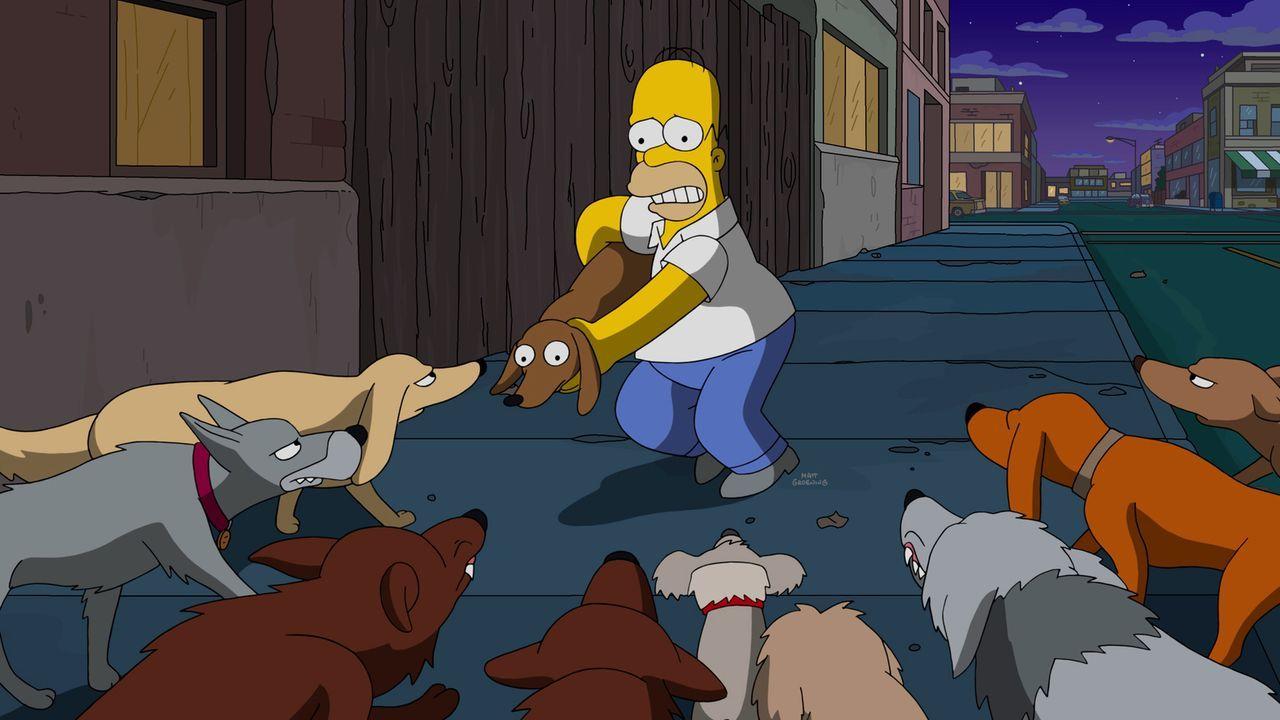 Erschreckenderweise wird bei Homers (Bild) Gerichtsverfahren entschieden, dass ein Hundeleben mehr wert ist, als ein Menschenleben - eine gravierend... - Bildquelle: 2016-2017 Fox and its related entities. All rights reserved.