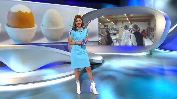 Galileo - Galileo - Samstag: Zarte Ware: Arbeiten In Der Eierfabrik