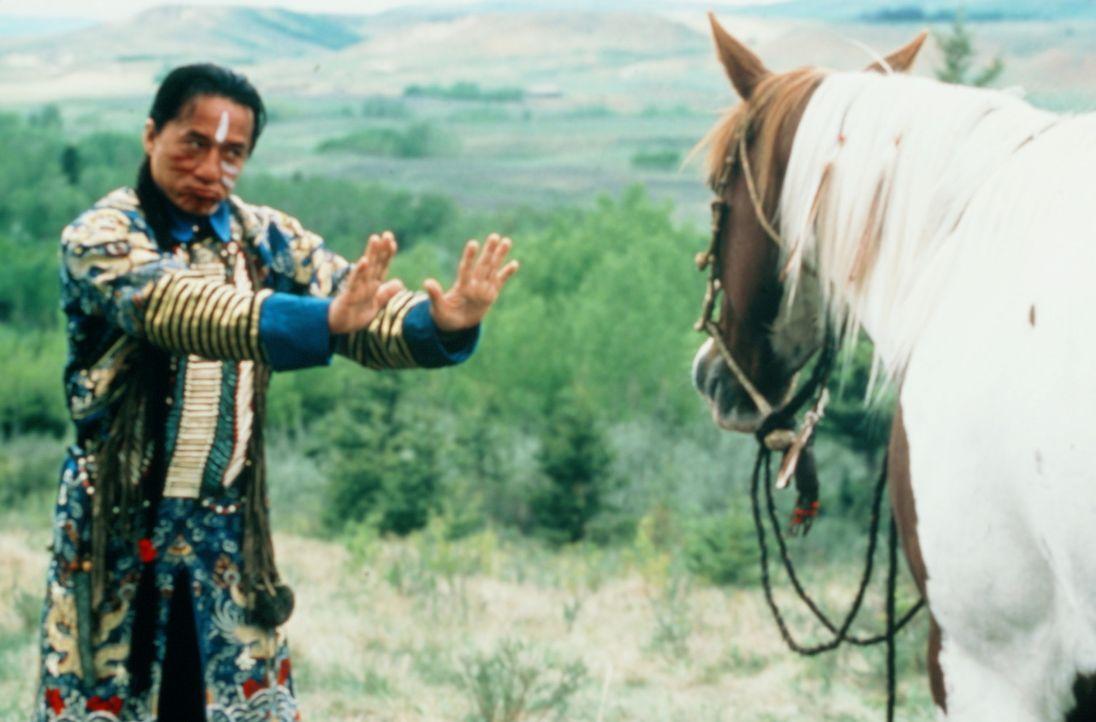 Der Gipfel von Chon Wangs (Jackie Chan) Misere ist ein völlig verrücktes Pferd, das nur tut, was es will ... - Bildquelle: SPYGLASS ENTERTAINMENT GROUP, LP
