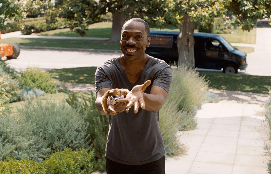Schweigen ist Gold: Nachdem Jack McCall (Eddie Murphy) einen neuen Auftrag angenommen hat, muss er plötzlich sein ganzes Leben umstellen. Doch das w... - Bildquelle: (2012) DW Studios L.L.C. All rights reserved.