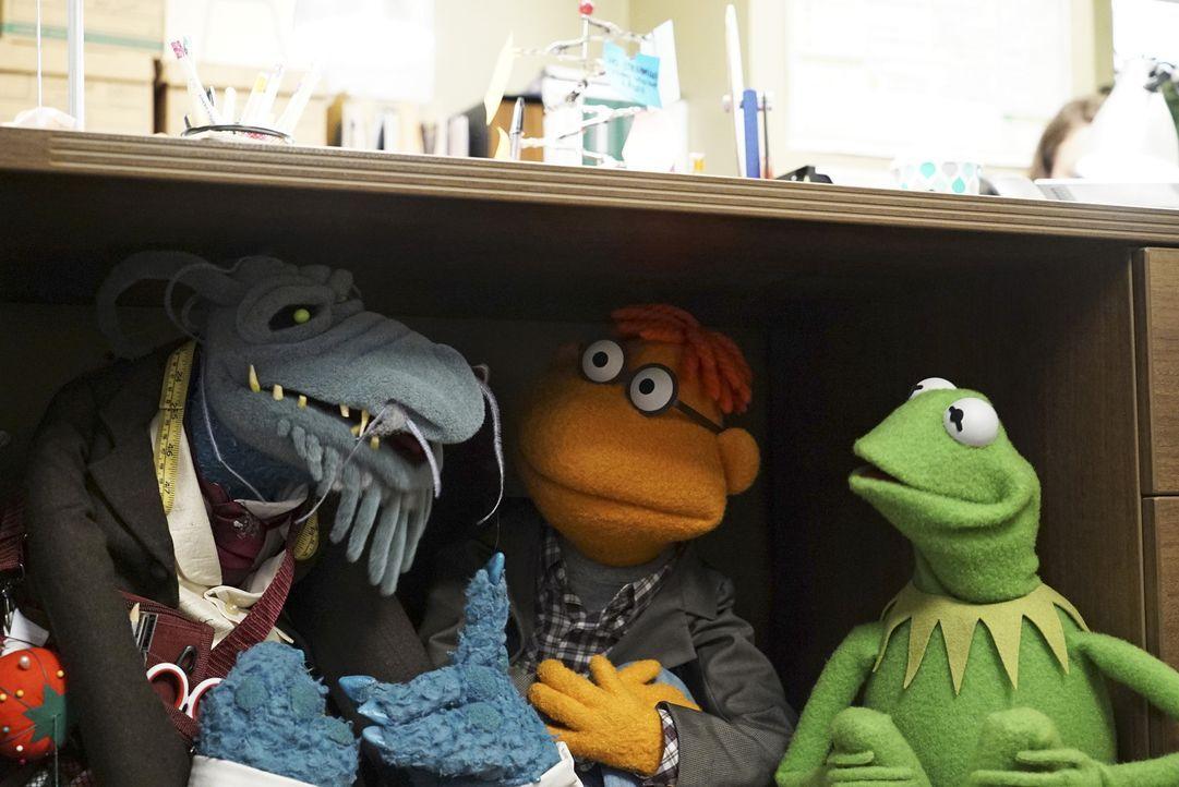 Miss Piggy hat schlechte Laune. Uncle Deadly (l.), Scooter (M.) und Kermit (r.) bringen sich vor ihr in Sicherheit ... - Bildquelle: Eric McCandless ABC Studios