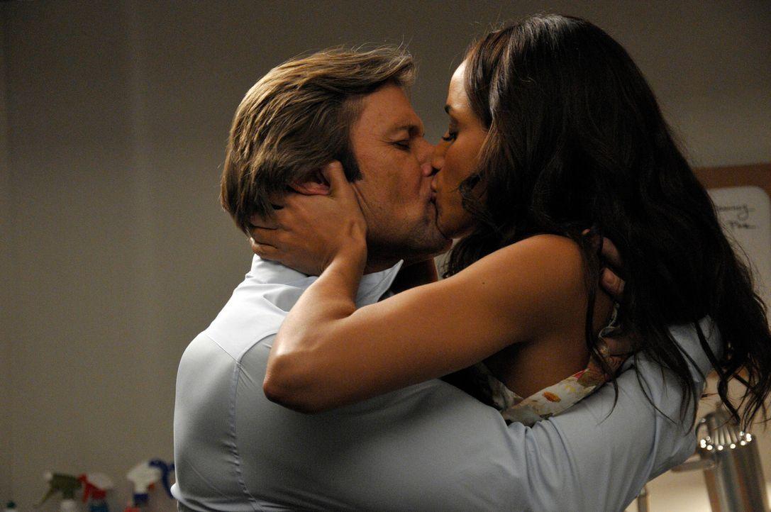 Rosie (Dania Ramirez, r.) möchte Spence (Grant Show, l.) helfen, seine Ehe zu retten, doch das ist leichter gesagt als getan ... - Bildquelle: ABC Studios