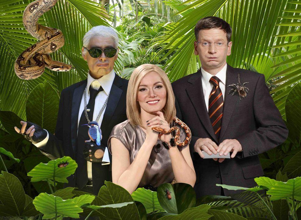 So prominent war der Dschungel noch nie! Karl Lagerfeld (Max Giermann, l.), Heidi Klum (Martina Hill, M.) und Günther Jauch (Michael Kessler, r.) g... - Bildquelle: ProSieben / Ralf Jürgens / Kai Schulz / Peter Boettcher