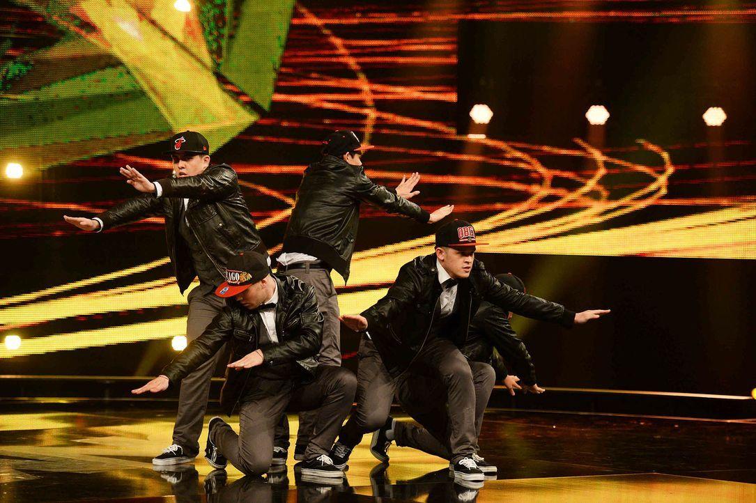 Got-To-Dance-Ginseng-Dance-Crew-05-SAT1-ProSieben-Willi-Weber - Bildquelle: SAT.1/ProSieben/Willi Weber