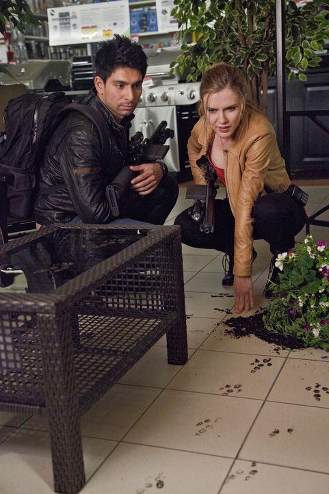 Gemeinsam nehmen sie den Kampf gegen die grässlichen Urzeitmonster auf: Dylan (Sara Canning, r.) und Mac (Danny Rahim, l.) ... - Bildquelle: Bettina Strauss