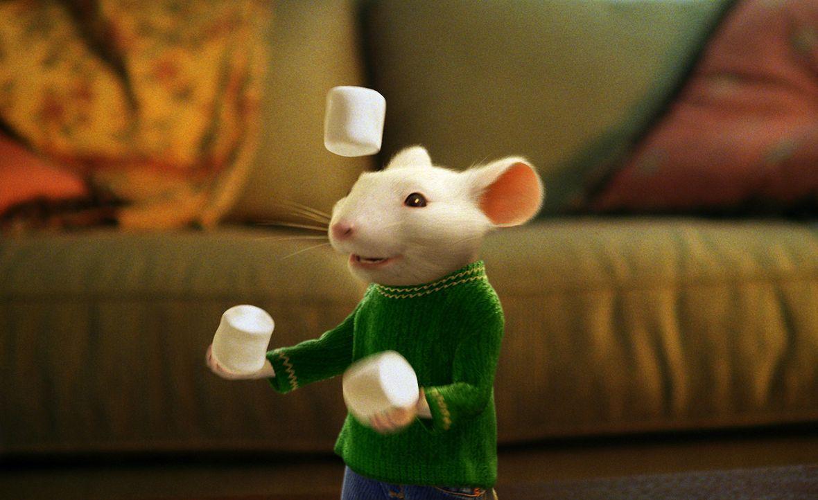 Stuart Little, eine kleine Maus, ist ein Ass beim Bau von Modellflugzeugen. Er fährt mit dem eigenen Auto zur Schule und hat es sogar in die Fußba... - Bildquelle: 2003 Sony Pictures Television International. All Rights Reserved.