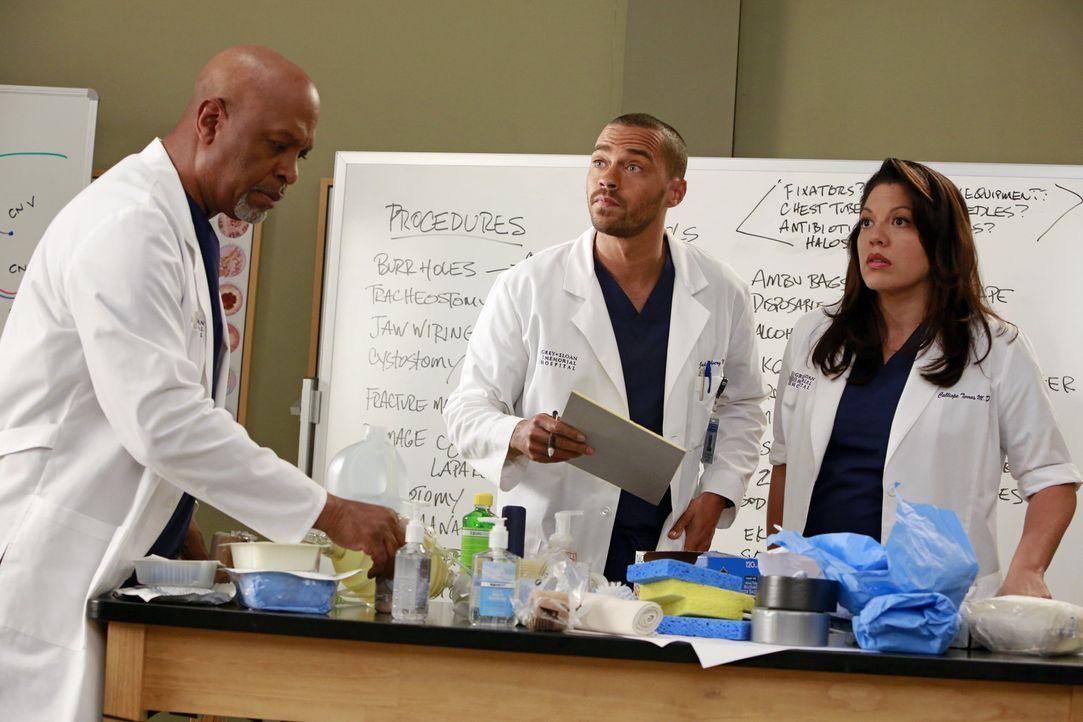 Jackson (Jesse Williams, M.) macht Callie (Sara Ramirez, r.) klar, dass auch sie einen schriftlichen Antrag stellen muss, wenn sie ein Knorpel-Regen... - Bildquelle: ABC Studios