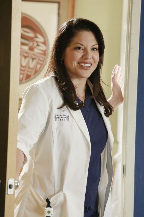 Callie (Sara Ramirez) versucht an Bailey heranzukommen. Vergeblich ... - Bildquelle: ABC Studios