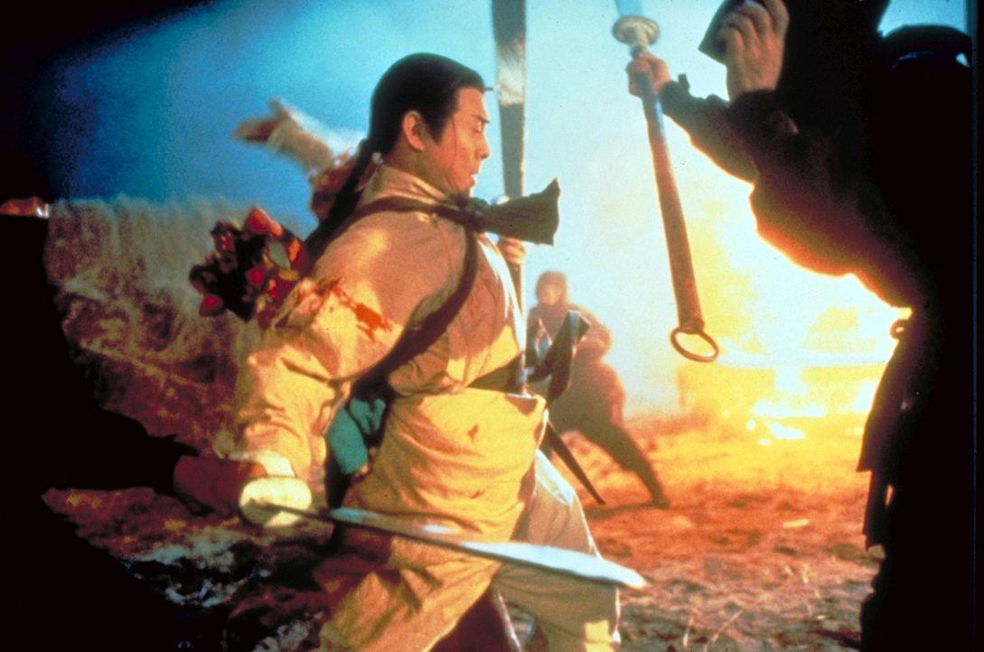 Hong (Jet Li) nimmt den Kampf auf und lehrt die Fürsten der Manchu-Dynastie das Fürchten ...