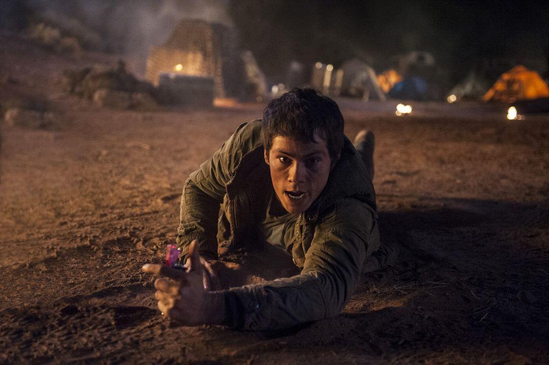 Maze-Runner2-07-2015Twentieth-Century-Fox - Bildquelle: 2015 Twentieth Century Fox
