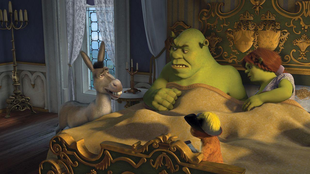 Das grüne Sumpfmonster Shrek und seine geliebte Fiona leben glücklich und zufrieden im wunderschönen Weit Weit Weg. Dann allerdings stirbt der K - Bildquelle: TM &   2007 Dreamworks Animation LLC