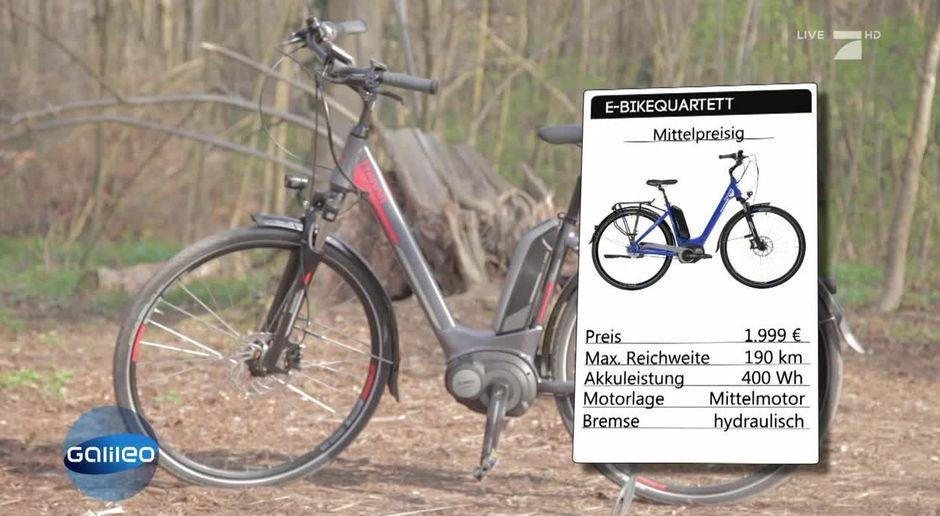 Teuer Gegen Günstig Der E Bike Test