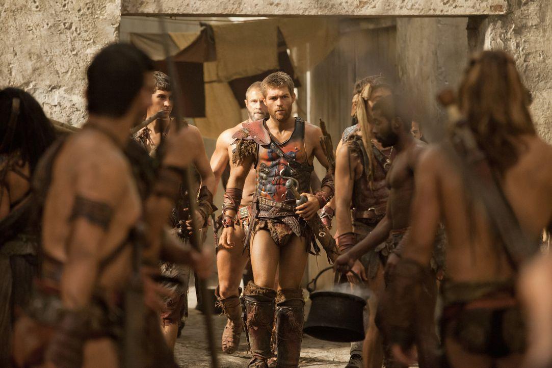 Will das sinnlose Morden eindämmen, was bei seinen Leuten allerdings nicht gut ankommt: Spartacus (Liam McIntyre, M.)... - Bildquelle: 2012 Starz Entertainment, LLC. All rights reserved.