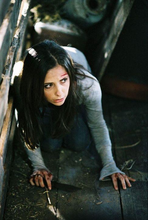 Gerät ins Visier eines eiskalten Killers: Joanna (Sarah Michelle Gellar) ... - Bildquelle: Tobis Film GmbH & Co. KG